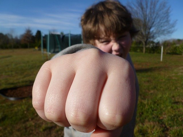 fist-bump-933916_640-copy